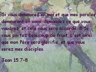 Jean 15.7-8