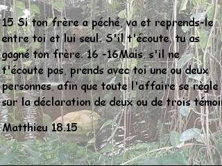 Matthieu 18.15