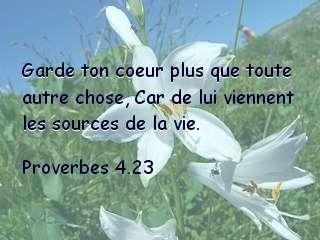 Proverbes 4.23