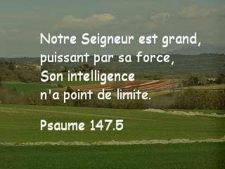 Psaume 147 .5