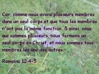 Romains 12.4-5