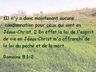 Romains 8.1-2