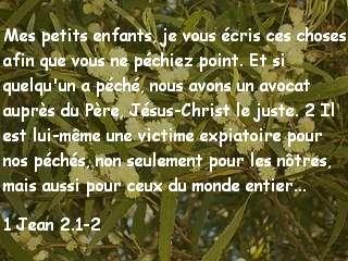 1 Jean 2.1-2