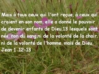 Jean 1.12-13.jpg
