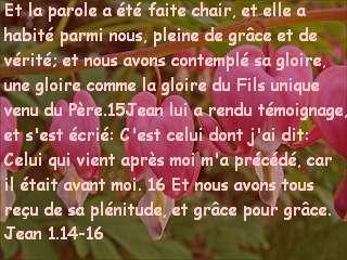 Jean 1.14-16.jpg