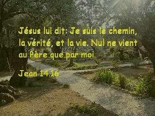 Jean 14.16.jpg