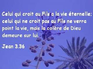 Jean 3.36