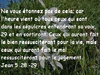 Jean 5.28-29..jpg