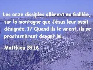 Matthieu 28.16