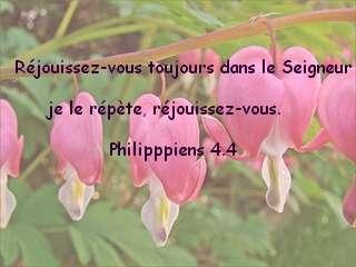 Philipppiens 4.4