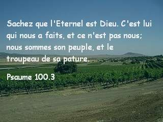 Psaume 100.3.jpg