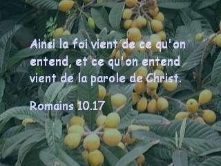 Romains 10.17