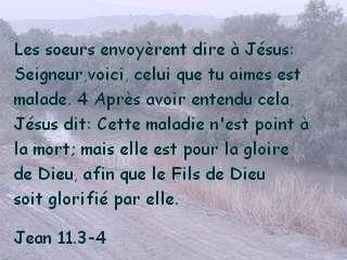 Jean 11.3-4.jpg