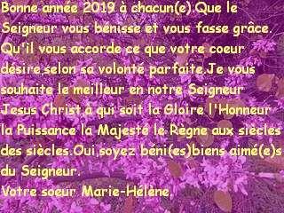 Bonne année 2019 à chacun(e).