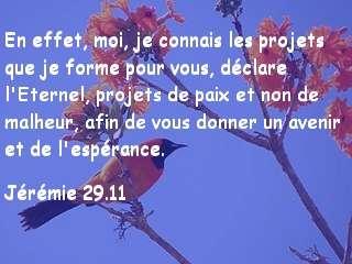Jérémie 29.11.