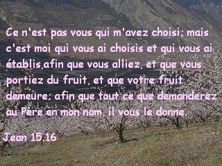 Jean 15.16.