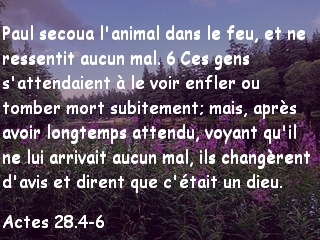 Actes 28.5-6.jpg