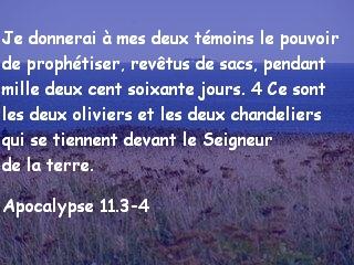 Apocalypse 11.3-4