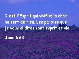 Jean 6.63.jpg