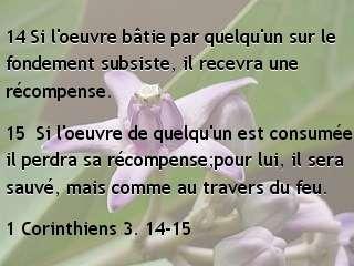 1 Corinthiens 3. 14-15