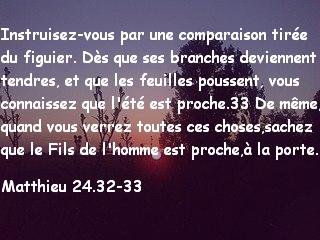 Matthieu 24.32-33