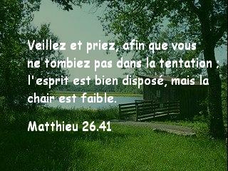 Matthieu 26.41.jpg