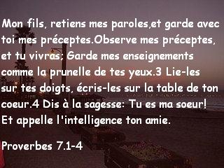 Proverbes 7.1-4.jpg