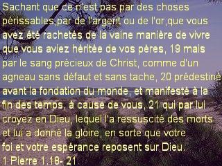 1 Pierre 1.18- 21.jpg