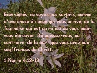 1 Pierre 4.12-13.