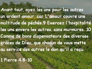 1 Pierre 4.8-10