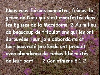 2 Corinthiens 8.1-2.jpg