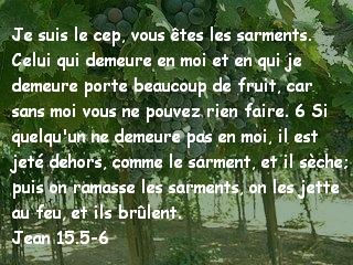 Jean 15.5-6