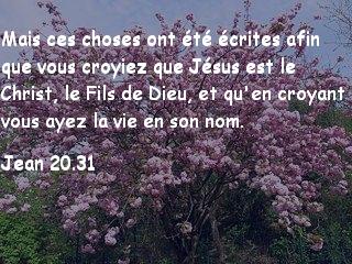 Jean 20.31.jpg