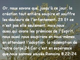 Romains 8.22-24