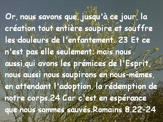 Romains 8.22-24.jpg