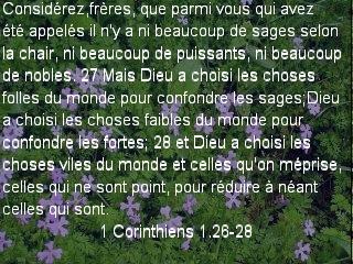 1 Corinthiens 1.26-28