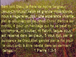 1 Pierre 1.3-5