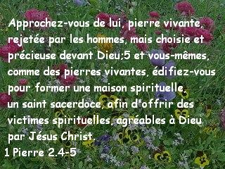 1 Pierre 2.4-5