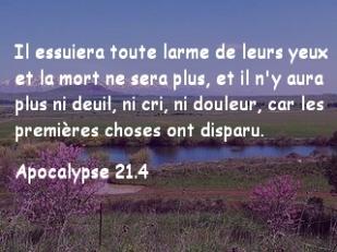 Apocalypse 21.4