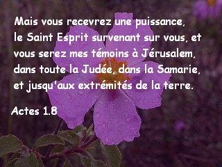 Actes 1.8.