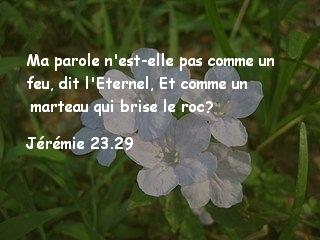 Jérémie 23.29