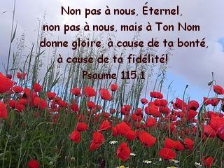 Psaume 115.1