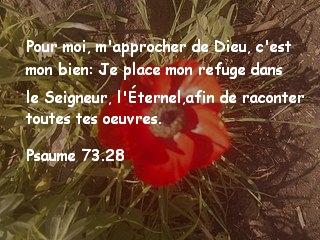 Psaume 73.28.jpg