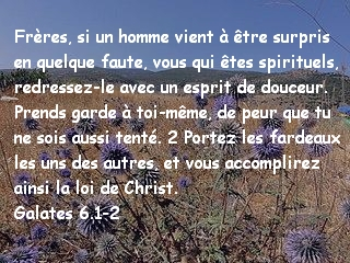 Galates 6.1-2 .