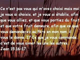 Jean 15.16-17