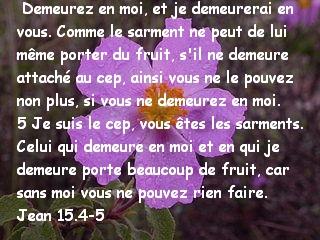 Jean 15.4-5