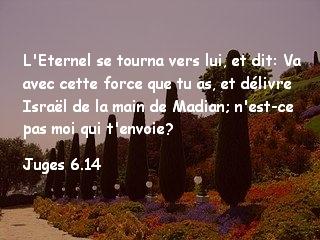 Juges 6.14