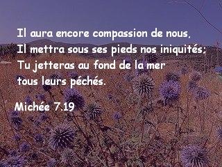 Michée 7.19