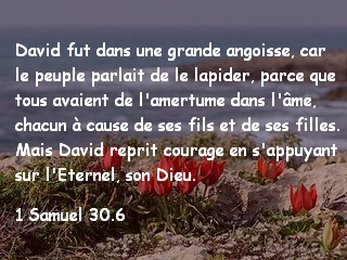 1 Samuel 30.6.