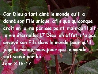 Jean 3.16-17